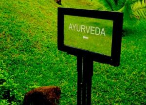"""Ayurveda"" ""Kerala"" ""Julia Emmerich"" ""KIMS"" ""Kovalam"" ""Leela hotels"""